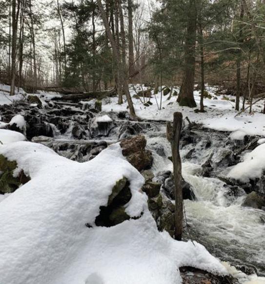 protect stony creek reservoir
