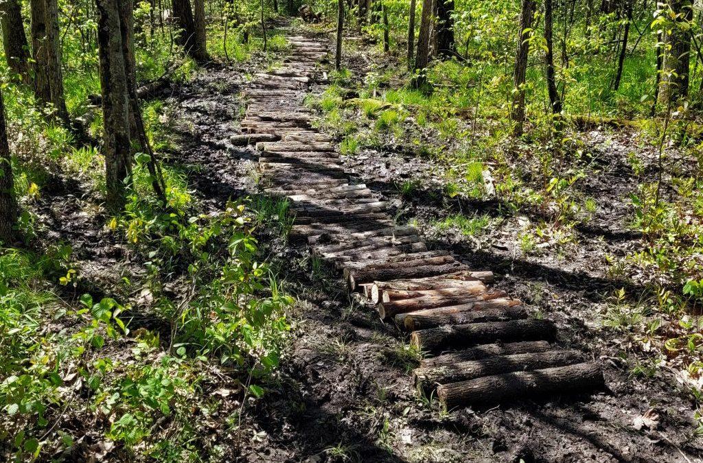 Trail repair highlight